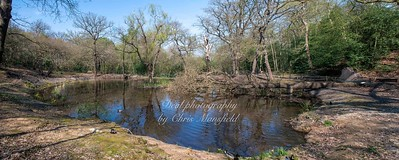 April 11th 2020 .  Lessness abbey woods pond