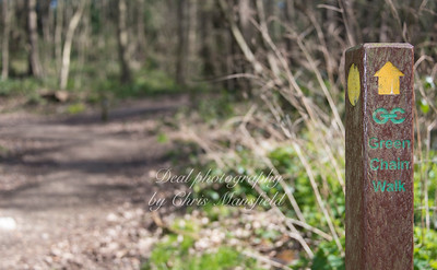 march 25th 2017 Lesnes abbey wood 01
