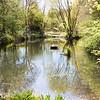 May 1st 2016, Slade pond