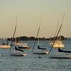 Belle Haven Harbor