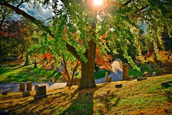 Greenwood Cemetery, Brooklyn 10/20/13
