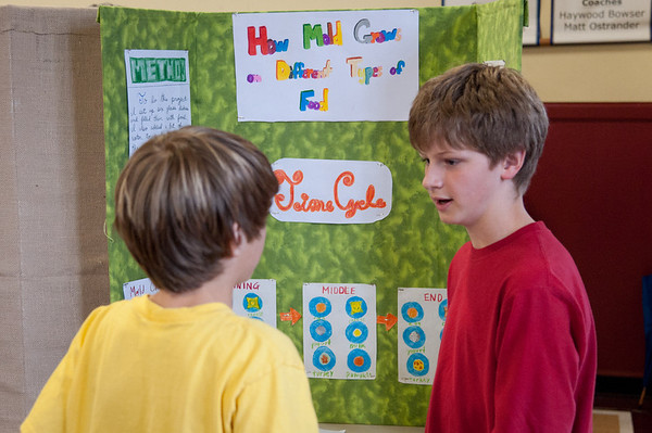 Science Fair highlights