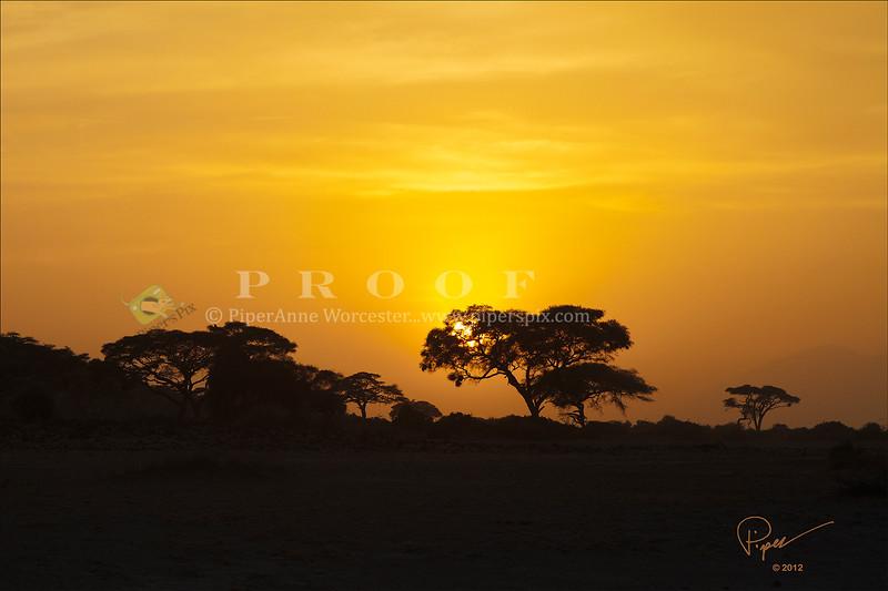 Sunset_African Sunset.jpg