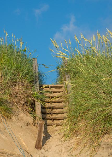 Steps 1265