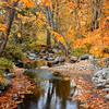 GC-084: A Creek Runs Through It #2
