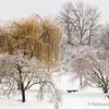 GC-115: Snow Day at Cuthbert #1
