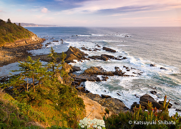 GC-030: View from Cape Arago