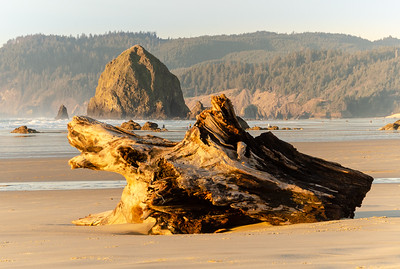 """Haystack Rock and Driftwood I""  (#OR305)"
