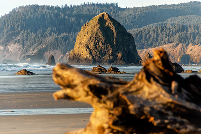 """Haystack Rock and Driftwood II""  (#OR306)"