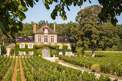 """""""Burgundy Chateau""""  (#TR505)"""