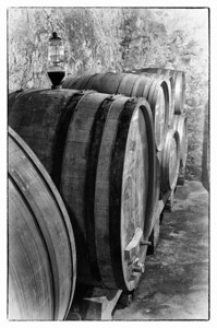 """The Wine Cellar""  (#WF707)"