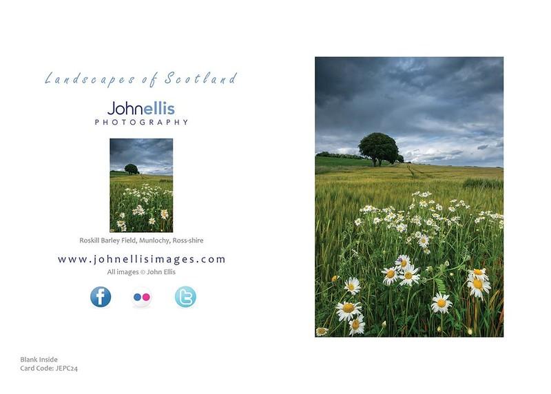 Roskill Barley Field, Munlochy, Ross-shire