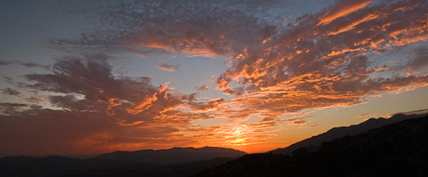 "Sunset above the Verdugo Mtn (#176)   <br></b> <div align=center>  <form target=""paypal"" action=""https://www.paypal.com/cgi-bin/webscr"" method=""post""> <input type=""hidden"" name=""cmd"" value=""_cart""> <input type=""hidden"" name=""business"" value=""dlcallet@yahoo.com""> <input type=""hidden"" name=""lc"" value=""US""> <input type=""hidden"" name=""item_name"" value=""Card 176""> <input type=""hidden"" name=""button_subtype"" value=""products""> <input type=""hidden"" name=""no_note"" value=""0""> <input type=""hidden"" name=""currency_code"" value=""USD""> <input type=""hidden"" name=""add"" value=""1""> <input type=""hidden"" name=""bn"" value=""PP-ShopCartBF:btn_cart_LG.gif:NonHostedGuest""> <table> <tr><td><input type=""hidden"" name=""on0"" value=""Size"">Size</td></tr><tr><td><select name=""os0""> 	<option value=""4 x 9 Panoramic"">4 x 9 Panoramic $5.00 USD</option> </select> </td></tr> </table> <input type=""hidden"" name=""currency_code"" value=""USD""> <input type=""hidden"" name=""option_select1"" value=""4 x 9 Panoramic""> <input type=""hidden"" name=""option_amount1"" value=""5.00""> <input type=""hidden"" name=""option_index"" value=""0""> <input type=""image"" src=""https://www.paypalobjects.com/en_US/i/btn/btn_cart_LG.gif"" border=""0"" name=""submit"" alt=""PayPal - The safer, easier way to pay online!""> <img alt="""" border=""0"" src=""https://www.paypalobjects.com/en_US/i/scr/pixel.gif"" width=""1"" height=""1""> </form>  <form target=""paypal"" action=""https://www.paypal.com/cgi-bin/webscr""           method=""post"">                 <input type=""hidden"" name=""business"" value=""dlcallet@yahoo.com"">                 <input type=""hidden"" name=""cmd"" value=""_cart"">       <input type=""hidden"" name=""display"" value=""1"">                 <input type=""image"" name=""submit"" border=""0""           src=""https://www.paypalobjects.com/en_US/i/btn/btn_viewcart_LG.gif""            alt=""PayPal - The safer, easier way to pay online"">       <img alt="""" border=""0"" width=""1"" height=""1""           src=""https://www.paypalobjects.com/en_US/i/scr/pixel.gif"" >   </form>        </div>"