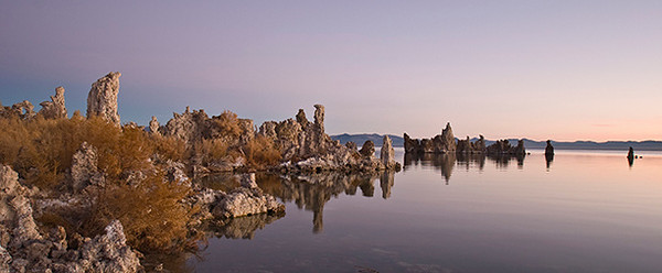 "Mono Lake Sunrise (#171)   <br></b> <div align=center>  <form target=""paypal"" action=""https://www.paypal.com/cgi-bin/webscr"" method=""post""> <input type=""hidden"" name=""cmd"" value=""_cart""> <input type=""hidden"" name=""business"" value=""dlcallet@yahoo.com""> <input type=""hidden"" name=""lc"" value=""US""> <input type=""hidden"" name=""item_name"" value=""Card 171""> <input type=""hidden"" name=""button_subtype"" value=""products""> <input type=""hidden"" name=""no_note"" value=""0""> <input type=""hidden"" name=""currency_code"" value=""USD""> <input type=""hidden"" name=""add"" value=""1""> <input type=""hidden"" name=""bn"" value=""PP-ShopCartBF:btn_cart_LG.gif:NonHostedGuest""> <table> <tr><td><input type=""hidden"" name=""on0"" value=""Size"">Size</td></tr><tr><td><select name=""os0""> 	<option value=""4 x 9 Panoramic"">4 x 9 Panoramic $5.00 USD</option> </select> </td></tr> </table> <input type=""hidden"" name=""currency_code"" value=""USD""> <input type=""hidden"" name=""option_select1"" value=""4 x 9 Panoramic""> <input type=""hidden"" name=""option_amount1"" value=""5.00""> <input type=""hidden"" name=""option_index"" value=""0""> <input type=""image"" src=""https://www.paypalobjects.com/en_US/i/btn/btn_cart_LG.gif"" border=""0"" name=""submit"" alt=""PayPal - The safer, easier way to pay online!""> <img alt="""" border=""0"" src=""https://www.paypalobjects.com/en_US/i/scr/pixel.gif"" width=""1"" height=""1""> </form>  <form target=""paypal"" action=""https://www.paypal.com/cgi-bin/webscr""           method=""post"">                 <input type=""hidden"" name=""business"" value=""dlcallet@yahoo.com"">                 <input type=""hidden"" name=""cmd"" value=""_cart"">       <input type=""hidden"" name=""display"" value=""1"">                 <input type=""image"" name=""submit"" border=""0""           src=""https://www.paypalobjects.com/en_US/i/btn/btn_viewcart_LG.gif""            alt=""PayPal - The safer, easier way to pay online"">       <img alt="""" border=""0"" width=""1"" height=""1""           src=""https://www.paypalobjects.com/en_US/i/scr/pixel.gif"" >   </form>        </div>"
