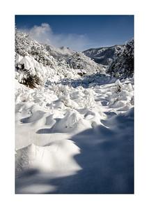 Snowy Arroyo