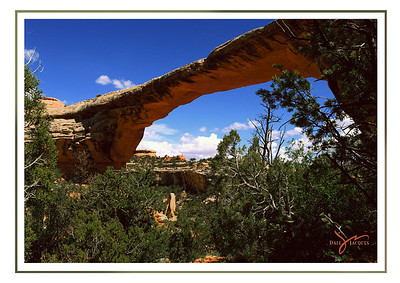Natural Bridges, Utah