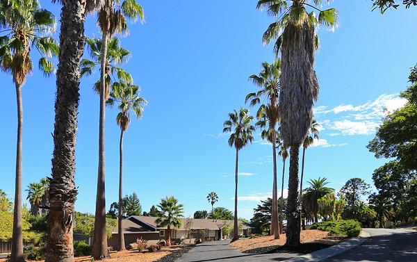 27071 Dezahara Way Los Altos Hills CA 94022