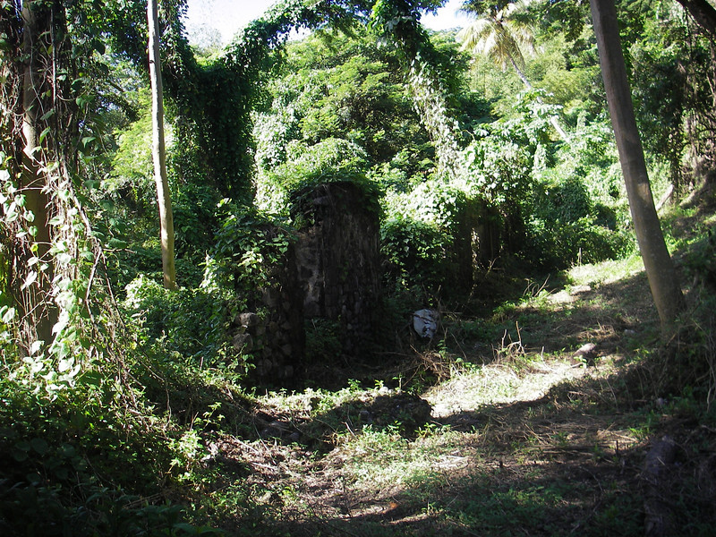 Ruins of an old sugar mill