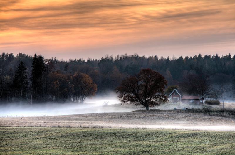 Misty Autumn Afternoon
