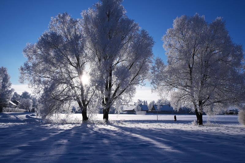 Ice Blue Day