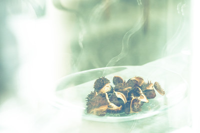 Chestnuts behind Vintage Glass