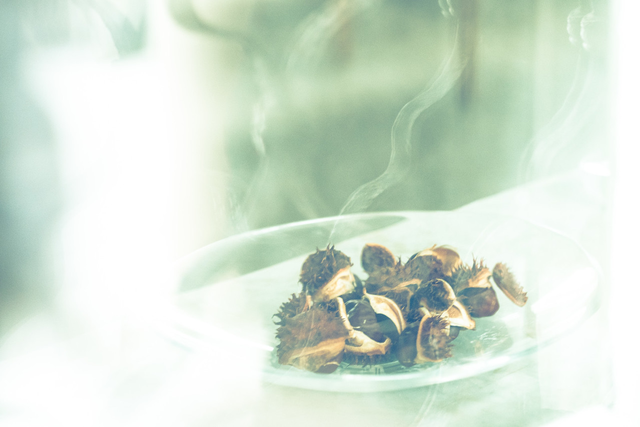 Chestnuts behind Vintage Glass