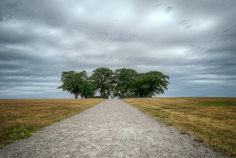 Meditation Grove