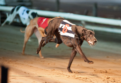 Droopys Diop
