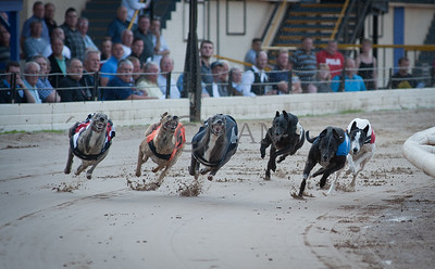 Droopys Cinders (t2)