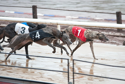 Droopys Casey(t1), Peacemaker (t4)