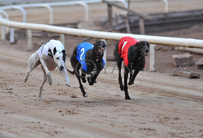 Master Mac, Small Tractor and Droopys Diop
