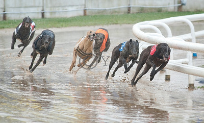 Droopys Ego (t1)