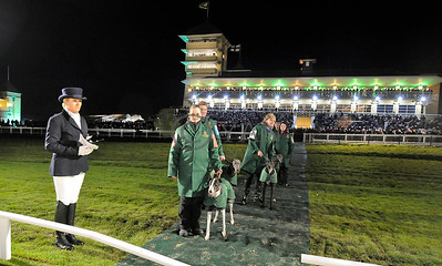 TOWCESTER parade for first race on opening night, 6 December 2014 with starter Vicky Booth (left) in charge. Photo Steve Nash