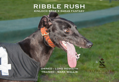 Ribble Rush