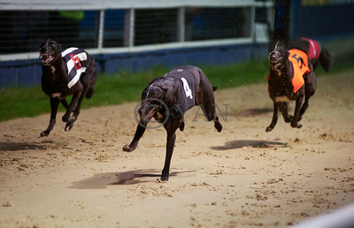Droopys Jet