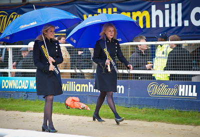 William Hill Girls