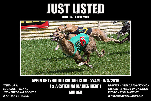 Appin Greyhounds