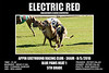 Appin_080510_R08_Electric_Red