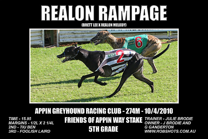 Appin_Greyhounds_100410_Race_10_Realon_Rampage