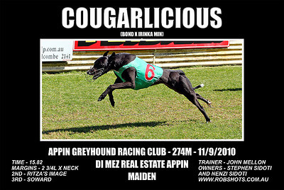Appin_110910_Race02_Cougarlicious