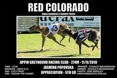 Appin_110910_Race10_Red_Colorado