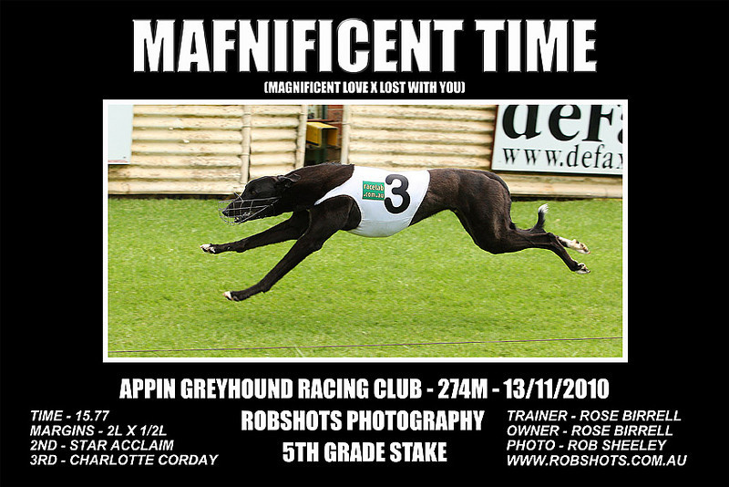Appin_131110_Race05_Magnificent_Time