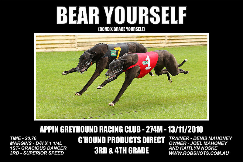 Appin_131110_Race07_Bear_Yourself