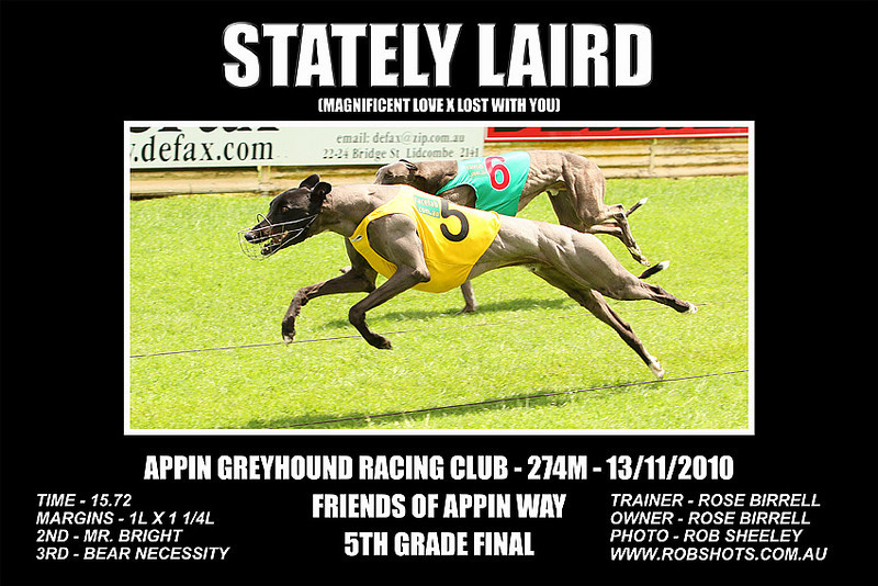 Appin_131110_Race06_Stately_Laird