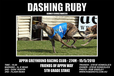 Appin Greyhounds - 15th May 2010