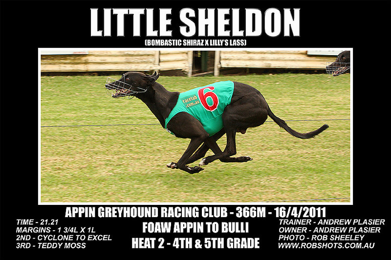 Appin_160411_Race05_Little_Sheldon