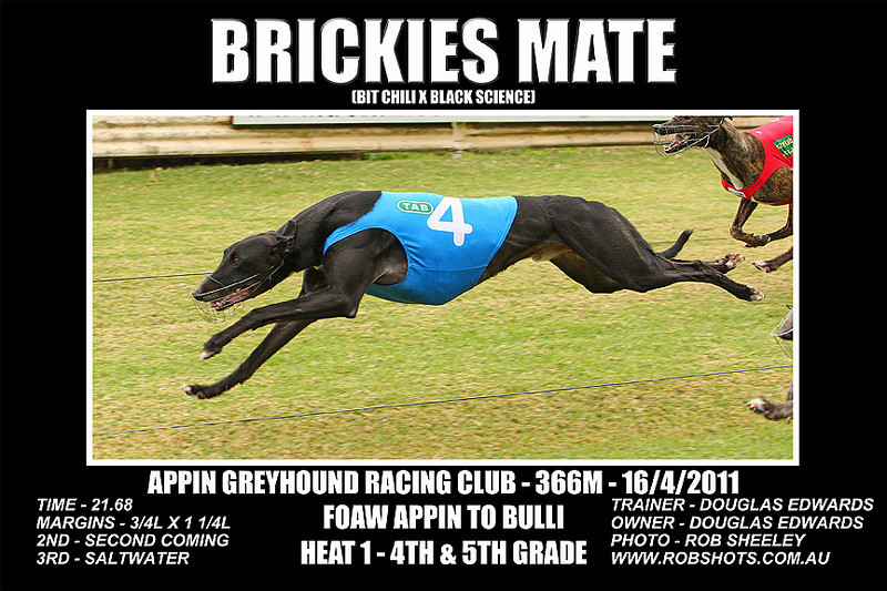 Appin_160411_Race01_Brickies_Mate