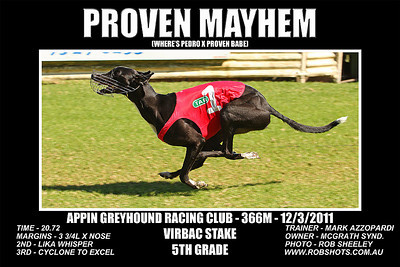 Appin_090411_Race02_Proven_Mayhem