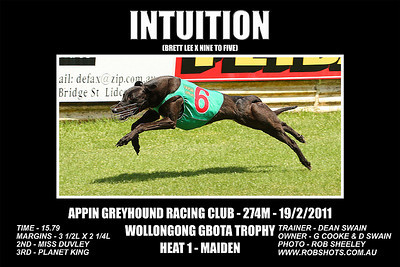 Appin Greyhounds - 19th February 2011