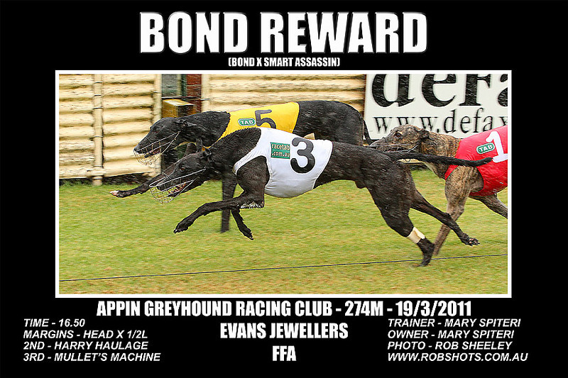 Appin_190311_Race03_Bond_Reward